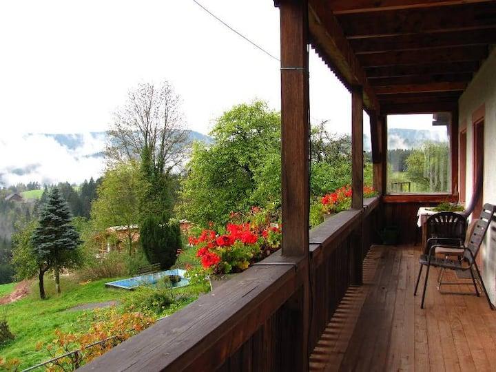 Ferienhof Rohrbachhof, (Schiltach), Ferienwohnung Panoramablick, 2 Schlafzimmer, max. 4 Personen