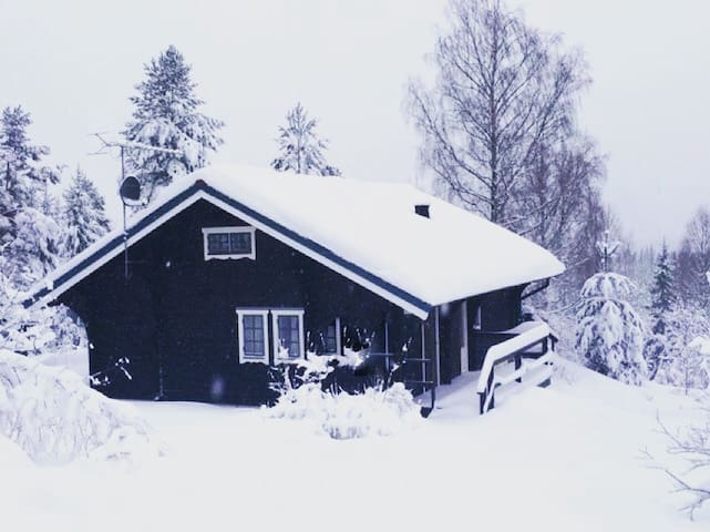 Cozy cabin near Romme Alpine