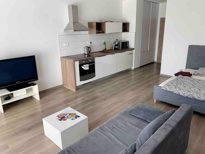 "Cozy luxurious apartment ""Roma"" in the centre"