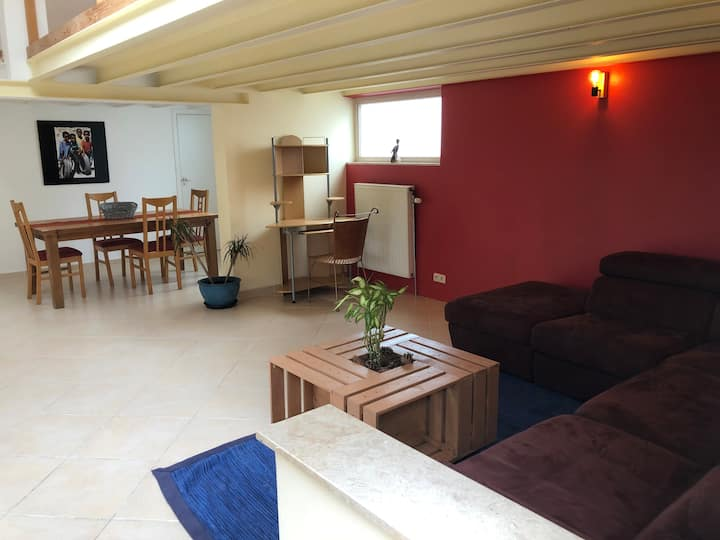 Cosy loft (70M²) in the green lung of Brussels