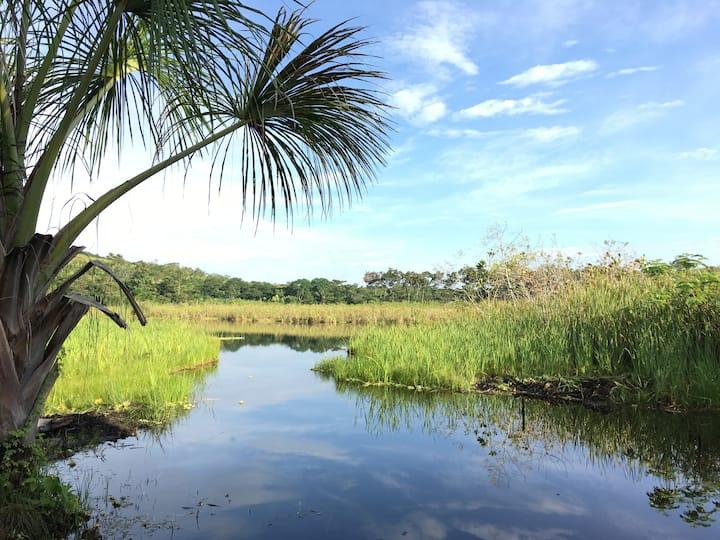 Las Alturas de la Laguna Andiviela