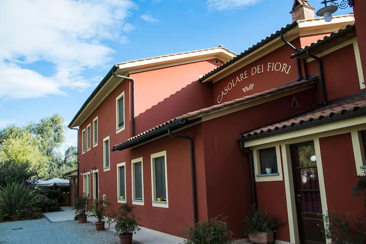 farmhouse in Tuscany - Marcucci
