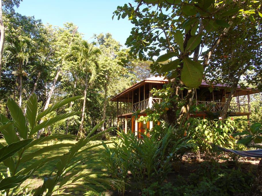 La maison est entourée par un jardin tropical
