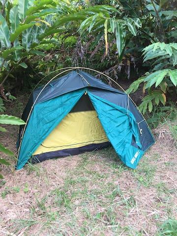 Irie Zion tent 🏕