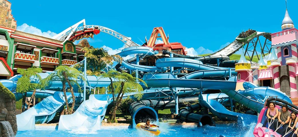 Parque acuático Xocomil a 4 minutos.  Disfrutarás literalmente de un paraíso de la Fiesta en el Agua, en donde puedes disfrutar los más impresionantes juegos acuáticos en medio de una exuberante vegetación. No te puedes perder el recorrido en el rio.
