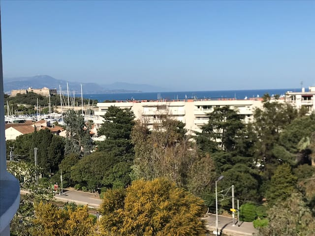 Large sea view Apt in Antibes town center