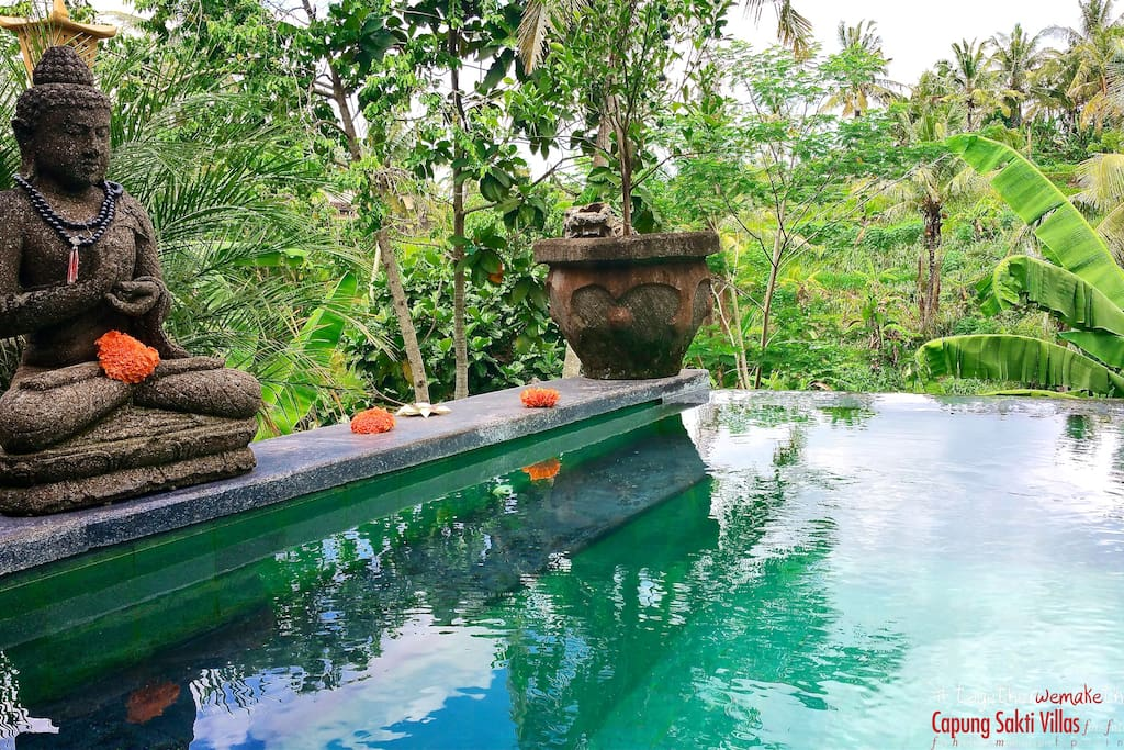 Your Infinity swimming pool, 180˚ overlooking the rice fields. A specular and unique view in Ubud.