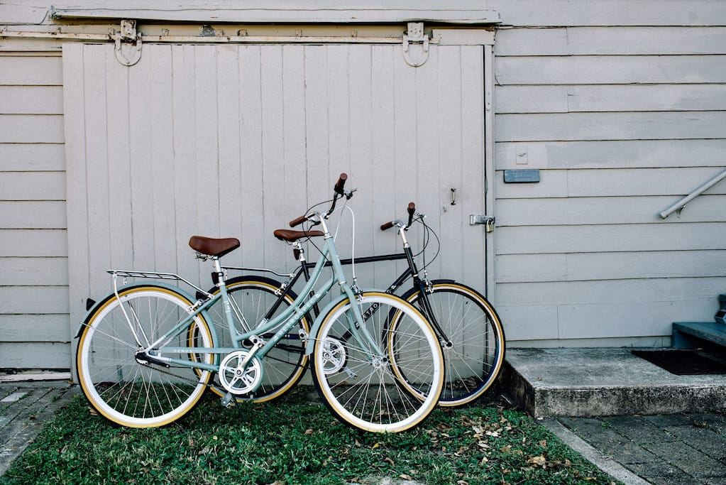 Two Bicycles for Exploring the City