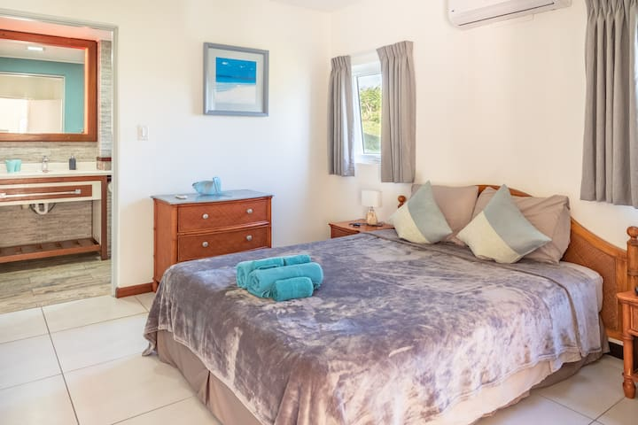 Master bedroom with aircon and bathroom.