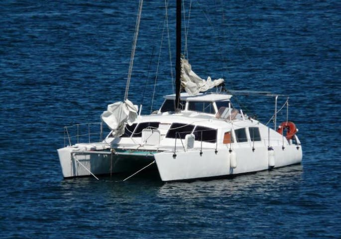 Insolite. Catamaran à quai. Camaret-sur-Mer - Camaret-sur-Mer - Boot