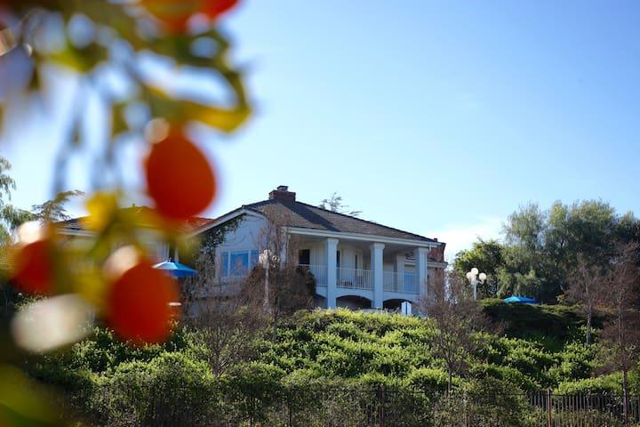 Riverside Overlook Estate + Concierge Service - Riverside - Dom