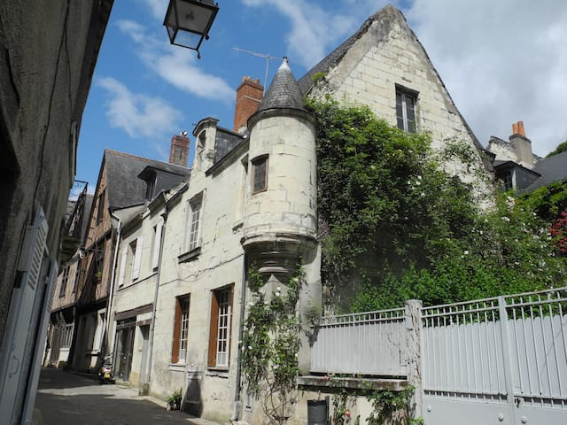 Gîte Vol ' Terre - Chinon - House
