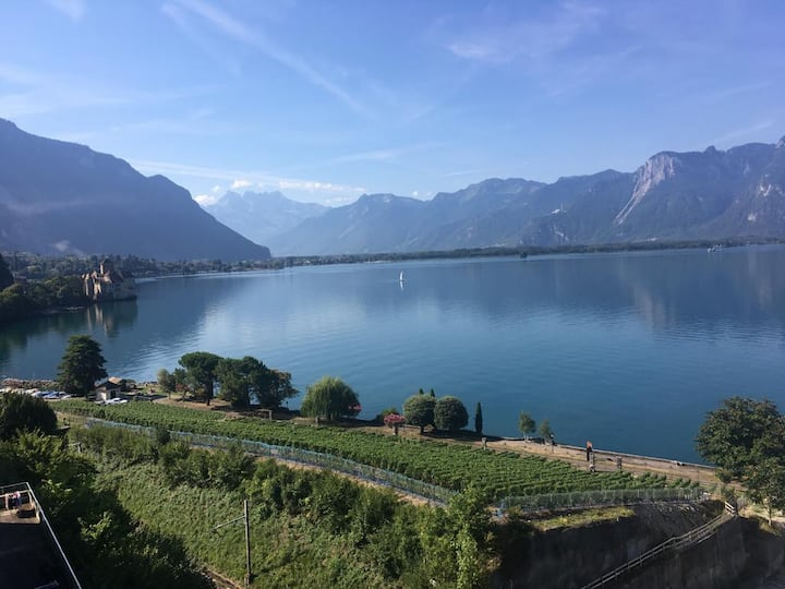 Beautiful flat  in Montreux - Baulac