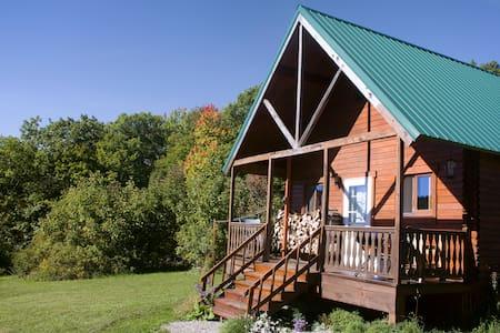 Mountain Queen Log Cabin - Freeville - 小屋