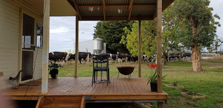 Budget Farmstay