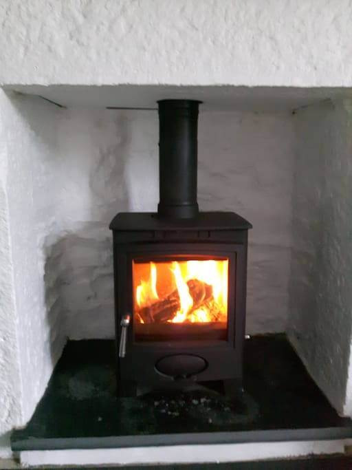 New wood burning fire in front room