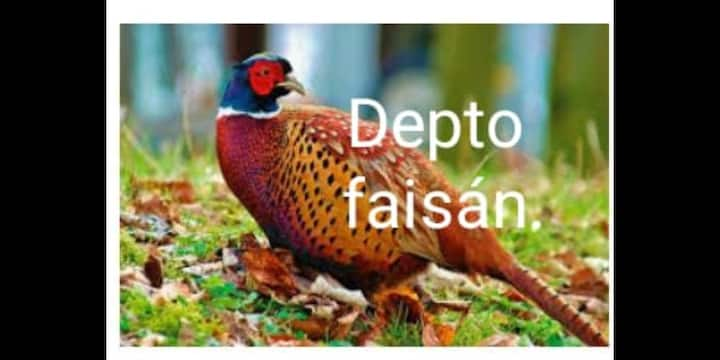 Depto 3 en Mérida Yucatán a 20 min del centro hist