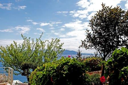 Nereus apt-Comfy Vacation w SeaView - Dikastika - Apartament