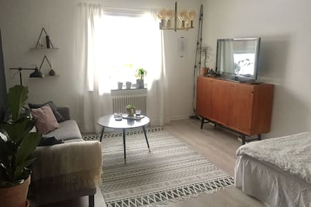 Clean and comfy apartment