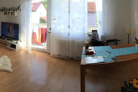Wohnung, Zimmer, in Seligenstadt/Froschhausen - Seligenstadt - Condominium