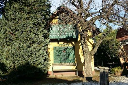 Charmantes Alt-Wiener Gartenhaus - Wien - House