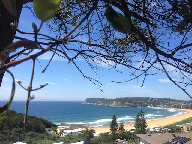 Coastal living 2 - Terrigal - Rumah