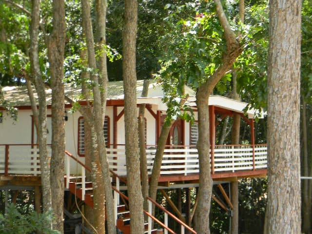 COAMO TREE HOUSE