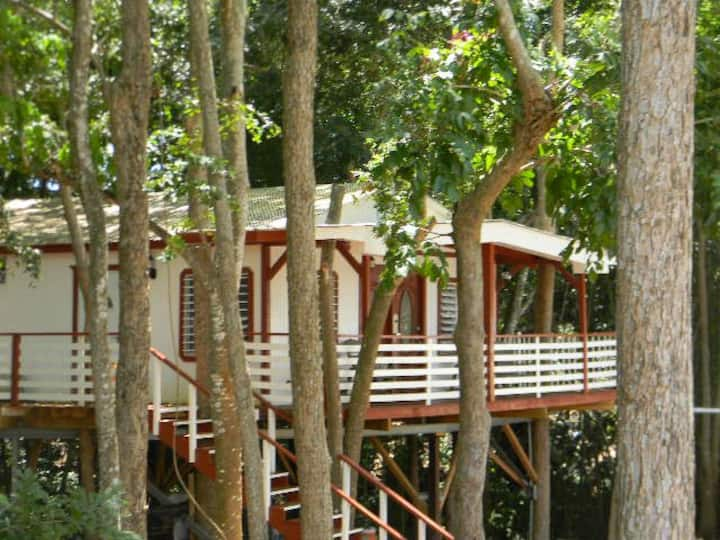 COAMO TREE HOUSE