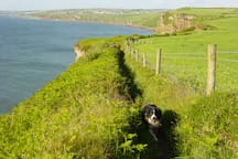 Coast path between St Bees Head & Whitehaven