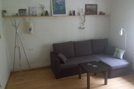 Nice apartment with kitchen in Cesis Old town - Cēsis