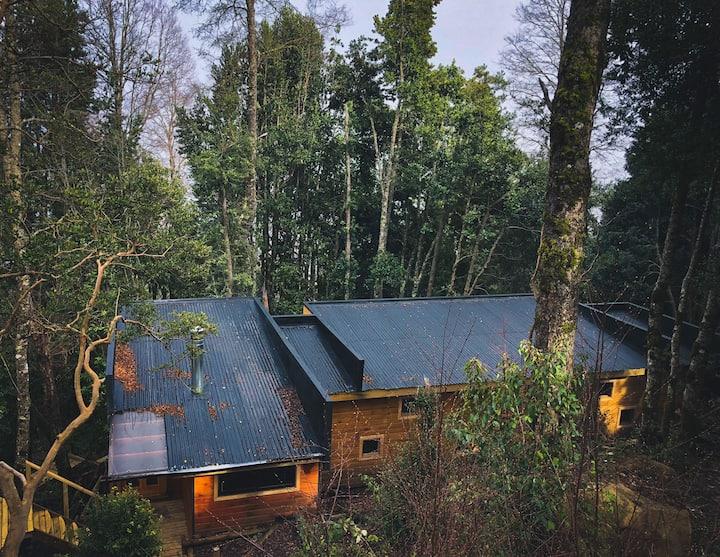 Hermosa Cabaña en los Árboles Pucon-Caburgua