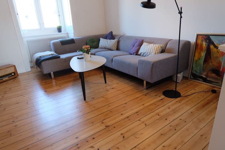 Living room - the spacious couch