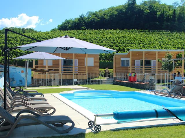 Mobile home in the vineyards - Vipava - Дом
