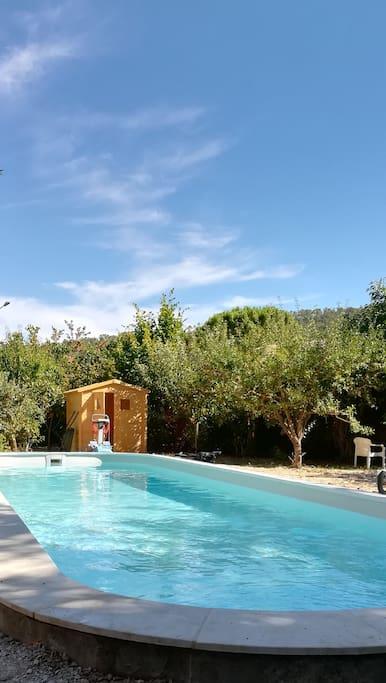 piscine au sel 12 m sur 3