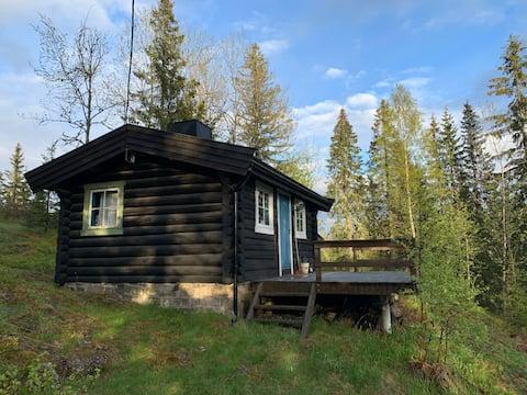 Tømmerhytte i skogen, med egen badebrygge
