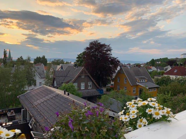 Nydelig Villa midt i hjertet av Trondheim