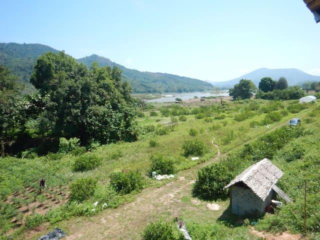 Phongphan Mekong River Organic Farm (River View) - Chiang Rai - Bungalow