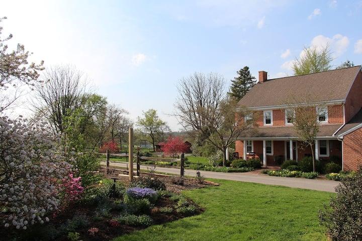 Garden Thyme Suite