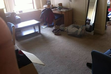 Partial of One bedroom apartment near CMU - Pittsburgh