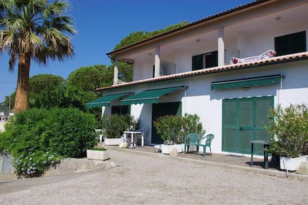 Appartamento Ciliegio - Marina di Campo