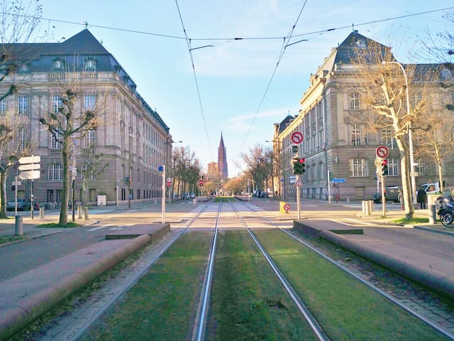 LOVELY APARTMENT (90m2) IN THE HEART OF STRASBOURG