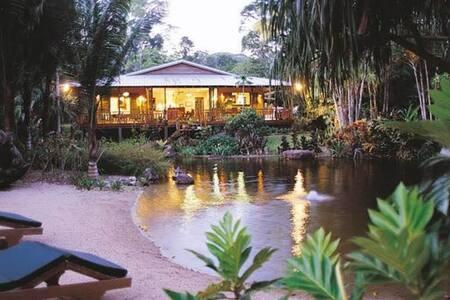 Daintree Holiday House - The Botanical Ark Retreat