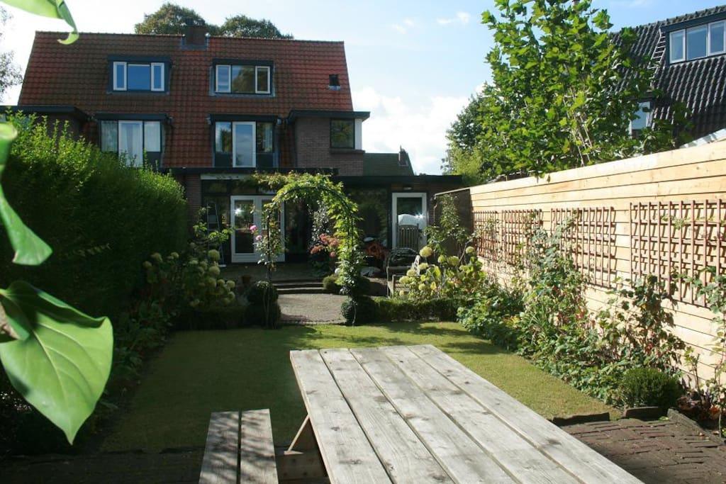 the back garden