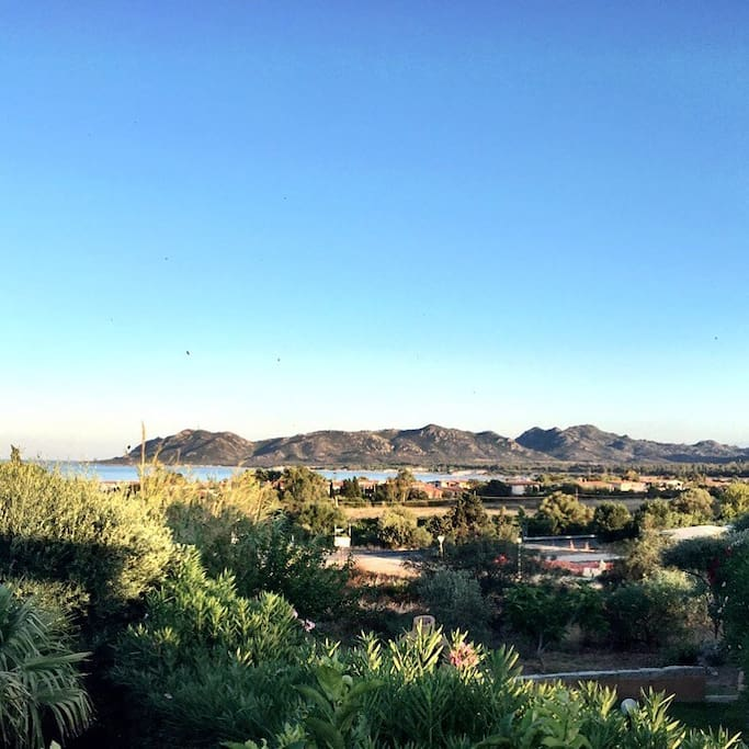 a very special good morning from the villas.