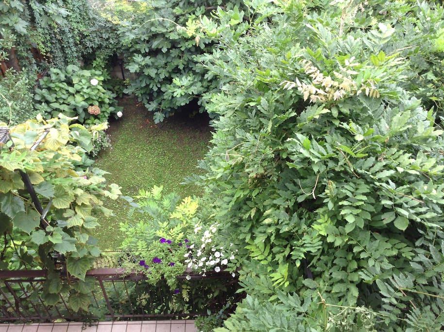 Il giardino...