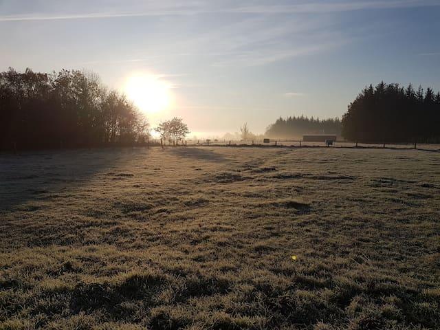 Wintermorgen auf dem Hof - Blick über die Ländereien