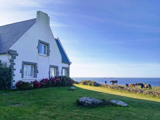 Beautifull villa by the sea