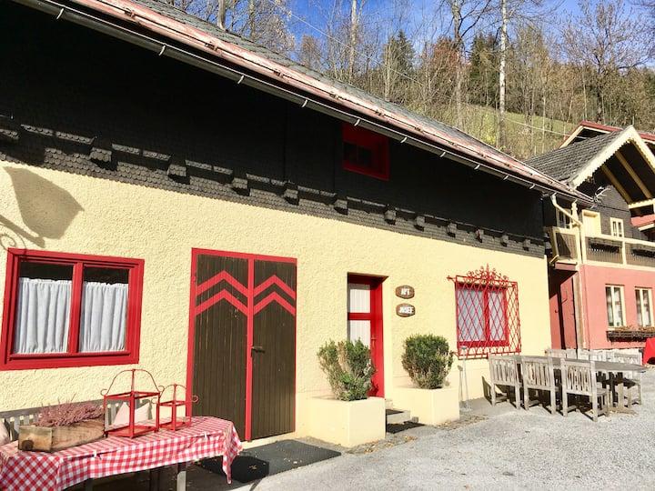 Preiswertes Ski-Haus - Nahe Ski Amadé