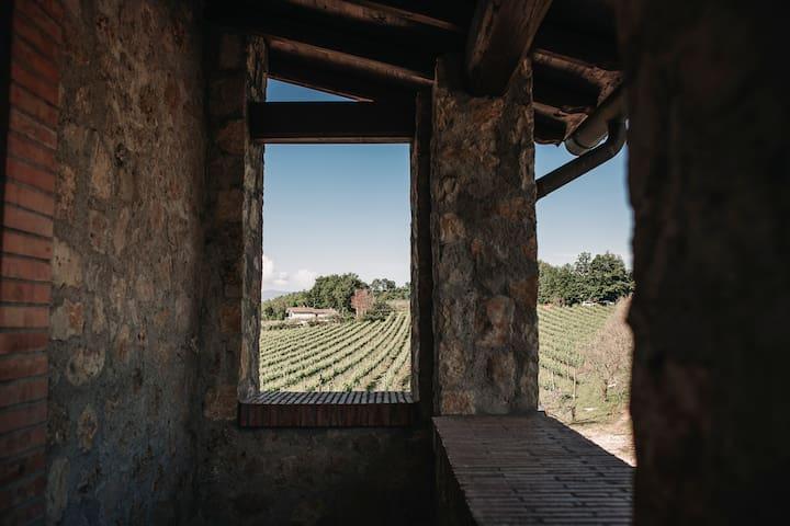 Casale VerdeLuna Agriturismo nel vigneto