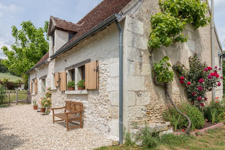 Le Petit Verger- tranquility and charm - Loches.